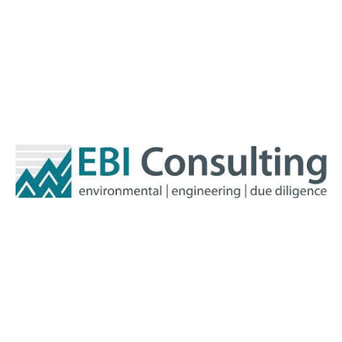 EBI Consulting
